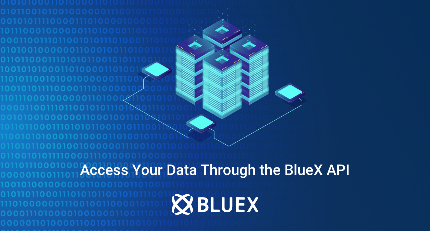 The BlueX API
